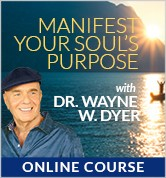 Manifest Your Life Purpose Using the I AM LIGHT Principles