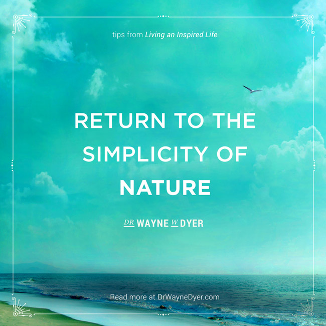 """""""Return to the simplicity of nature"""" — Dr. Wayne Dyer #simplicity #mindfulness #quotes #wayne #dyer"""